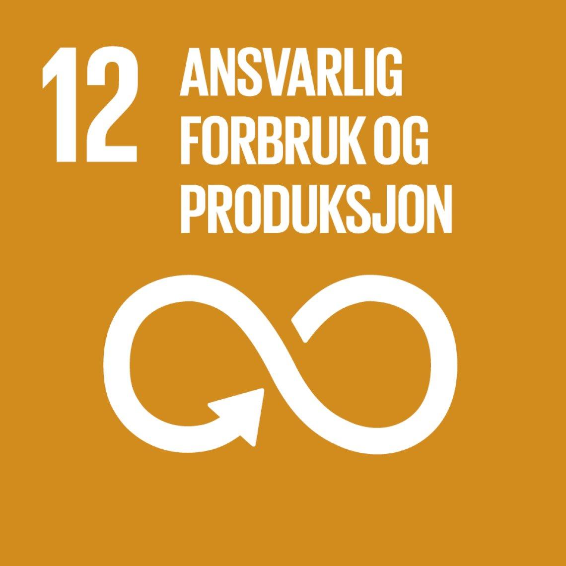 Bilderesultater for bærekraftsmål 12